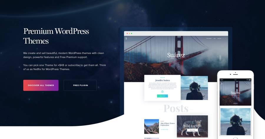 Premium WordPress website Theme