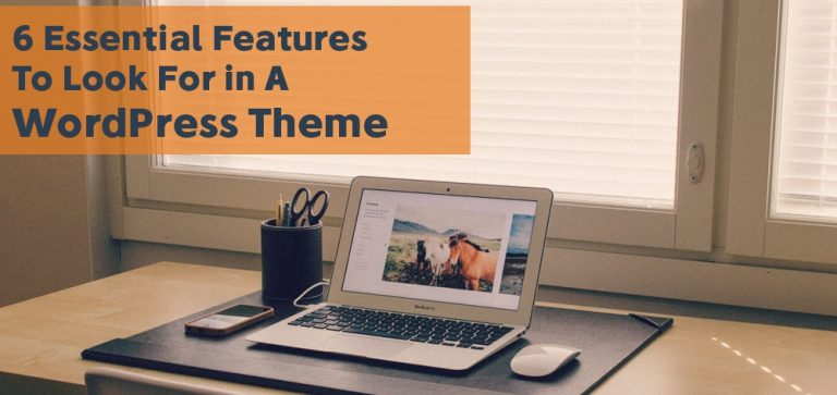 WordPress Theme Features