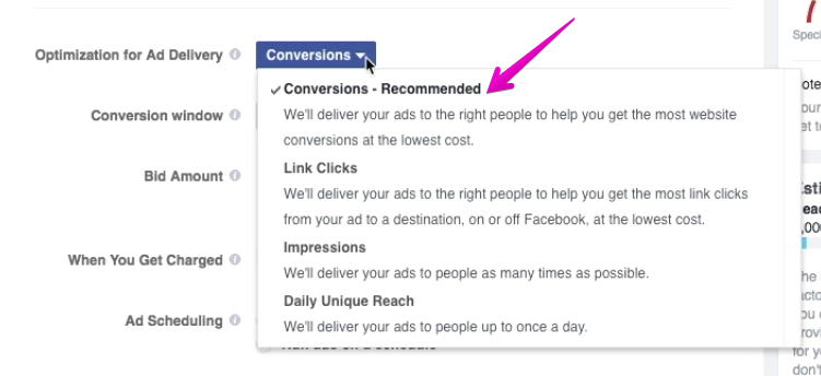Ad Delivery Dropdown Conversion-Recc