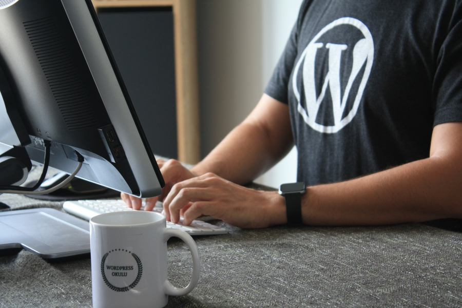 wordpress more than blogging