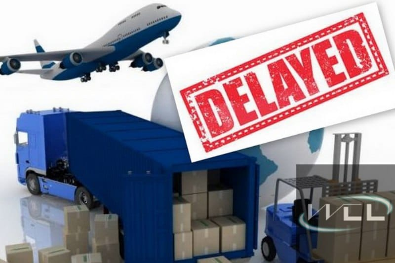 Logistic delayed